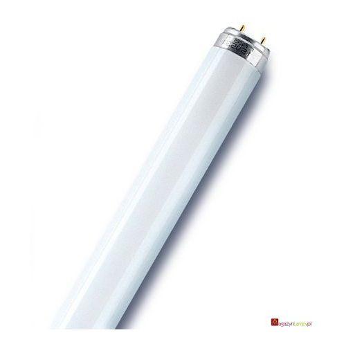 Oferta L 30W/965 świetlówka liniowa T8 Osram