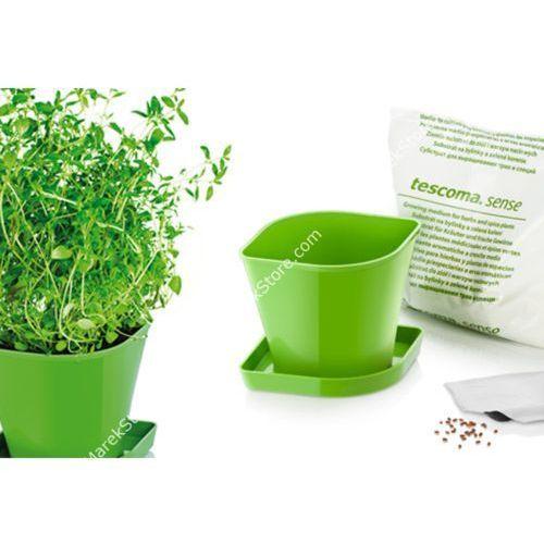 Zioła w kuchni - zestaw donica z podstawką, ziemia oraz nasiona tymianku - kwadratowe, produkt marki Tescoma