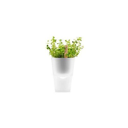 Produkt Doniczka na zioła  11 cm, szkło mrożone, marki Eva Solo