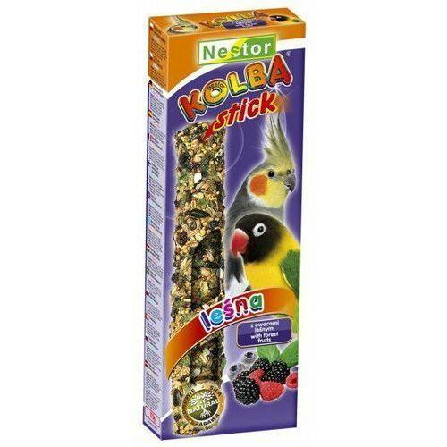Nestor Kolba Papuga średnia owoce leśne, nestor