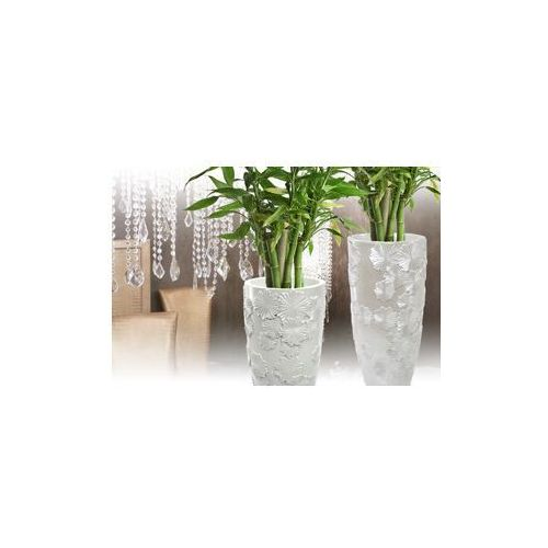 Produkt Donica Aria -  - mat white 18