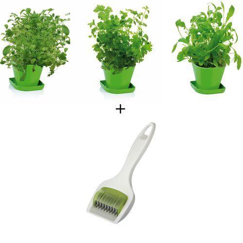 Zestaw do uprawy ziół Sense + zioła, produkt marki Tescoma