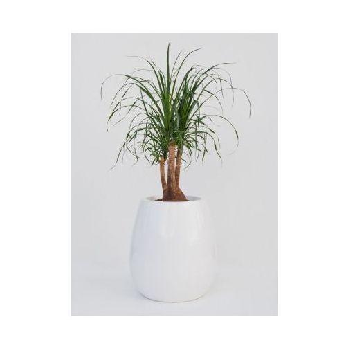 Produkt Donica ogrodowa -  - Silba, marki Kama Flower