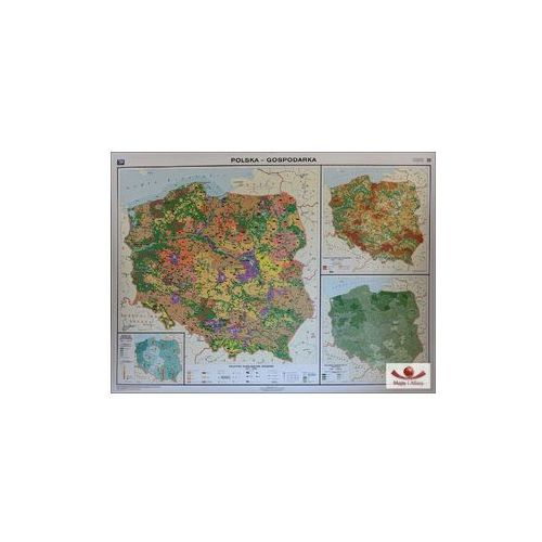 Polska gospodarka (Rolnictwo / przemysł). Mapa ścienna Polski, produkt marki Nowa Era