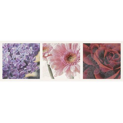 Oferta Briosa Inserto Flora B 20x60 (glazura i terakota)