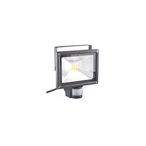 Naświetlacz LED 30W barwa 6500k zimnaz czujnikiem ruchu z kategorii oświetlenie