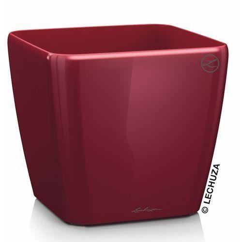 Donica Lechuza Quadro LS czerwona scarlet red, produkt marki Produkty marki Lechuza