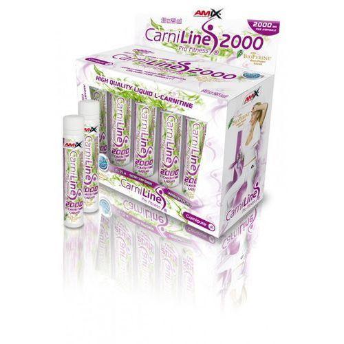 Redukcja wagi  carniline ® pro fitness 2000 amp. wyprodukowany przez Amix