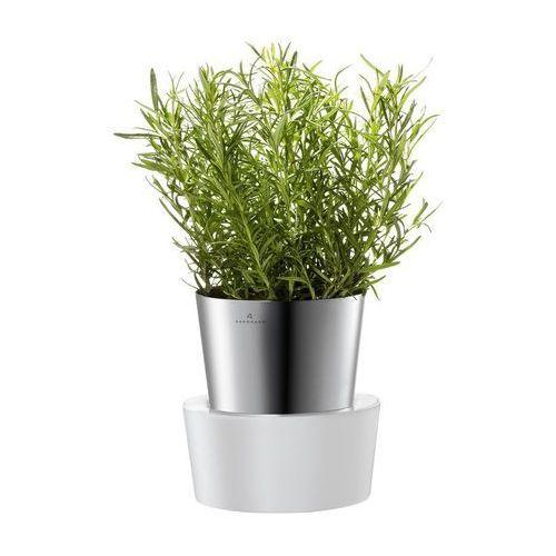 - pojedyńcza doniczka na zioła, produkt marki Auerhahn