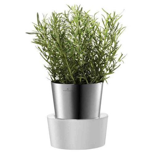 Donica na zioła Auerhahn Herbs, produkt marki Produkty marki Auerhahn