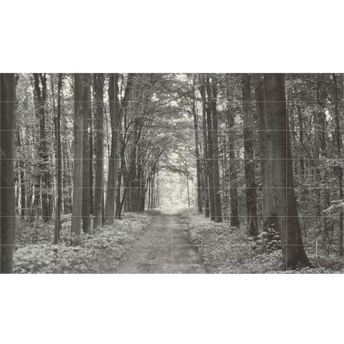 Obraz 42-Elem.All in White 1 359,8x209,8 (glazura i terakota)