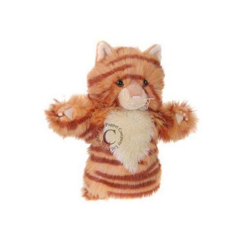 Rudy kot - pacynka krótki rękaw (pacynka, kukiełka)