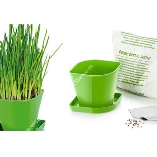 Zioła w kuchni - zestaw donica z podstawką, ziemia oraz nasiona szczypiorku - kwadratowe, produkt marki Tescoma