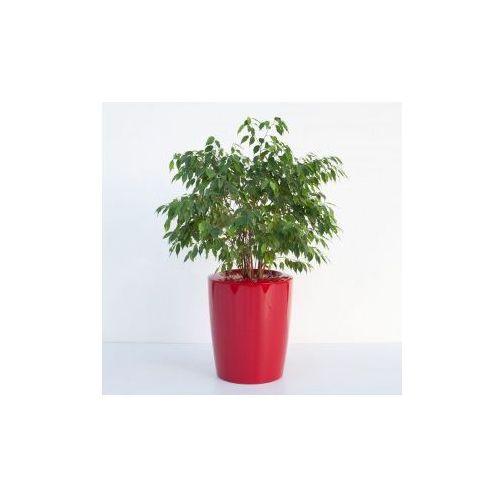 Produkt Donica ogrodowa -  - Anakena, marki Kama Flower