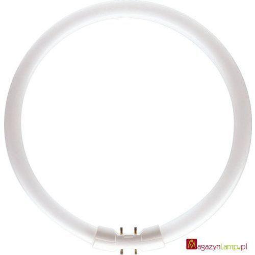 Oferta MASTER TL5 Circular 22W/830 świetlówki kołowe Philips
