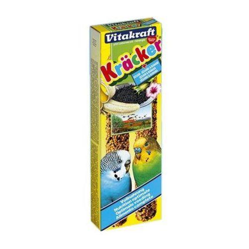 kolba dla papużki falistej sezamowa