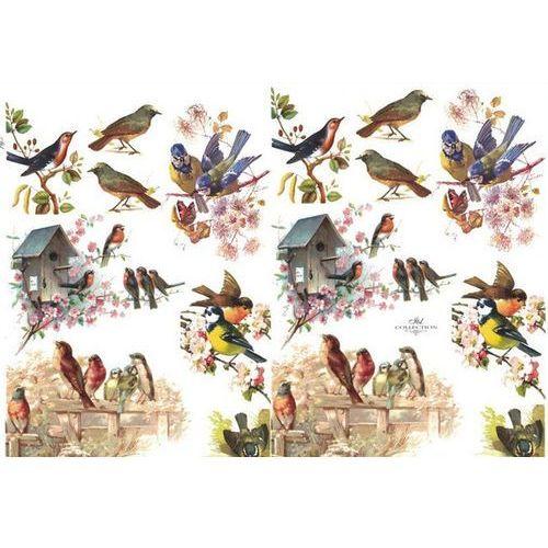 Papier do decoupage A3 ITD - 389 ptaszki, karmniki od papierA4.pl - tu warto kupować