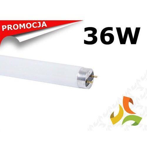 Świetlówka 36W/840 T8 liniowa trójpasmowa HYUNDAI ze sklepu MEZOKO.COM