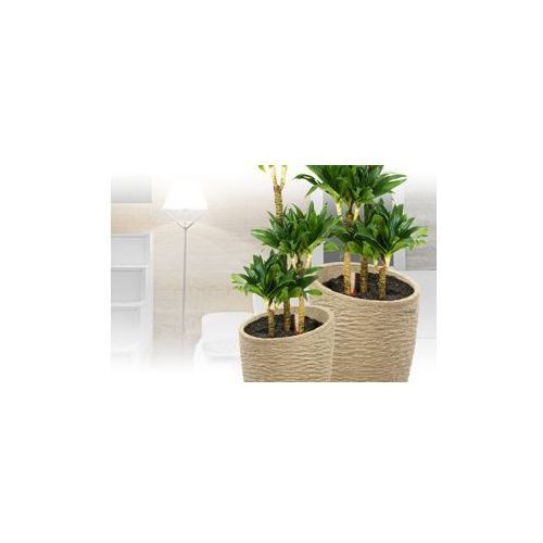 Produkt Donica Carrara -  - F1032B, marki Arte Home