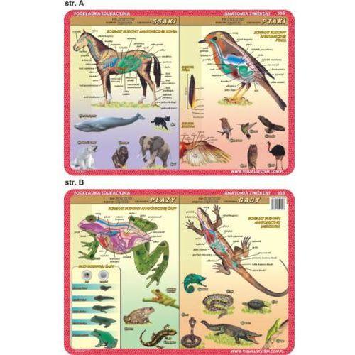 Anatomia zwierząt - podkładki edukacyjne (3 szt.) - oferta [7599dfaf5f831328]