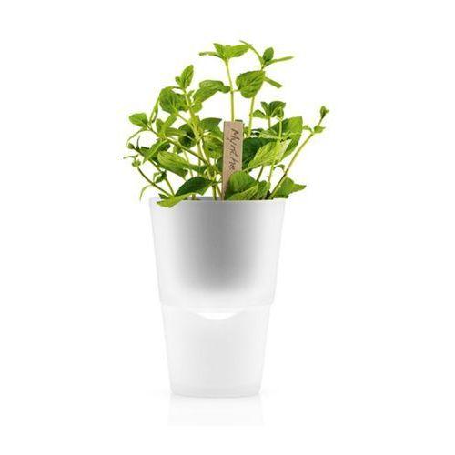 Doniczka na zioła 11 cm Eva Solo mrożone szkło, produkt marki Produkty marki Eva Solo