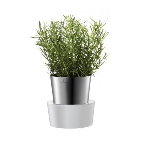 - Doniczka x 1 HERBS na zioła, bez opak., produkt marki Auerhahn