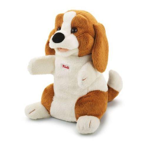 Pluszowa pacynka na rękę, przytulanka piesek, Beagle, 29928-Trudi, zabawa w teatrzyk (pacynka, kukiełka)
