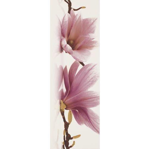Oferta Abrila Bianco inserto Kwiat A 20x60 (glazura i terakota)