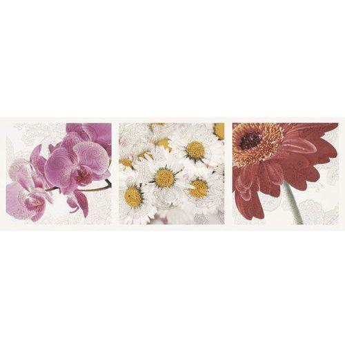 Oferta Briosa Inserto Flora A 20x60 (glazura i terakota)