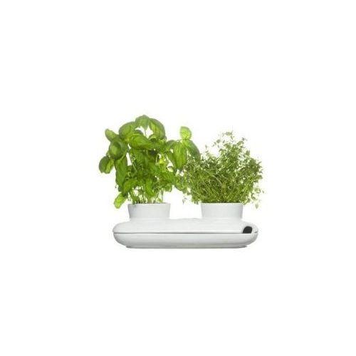Produkt Doniczka / osłonka do ziół  Herbs&Spices, marki Sagaform