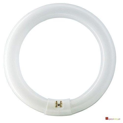 Oferta MASTER TL-E Circular Super 80 32W/865 świetlówki liniowe Philips