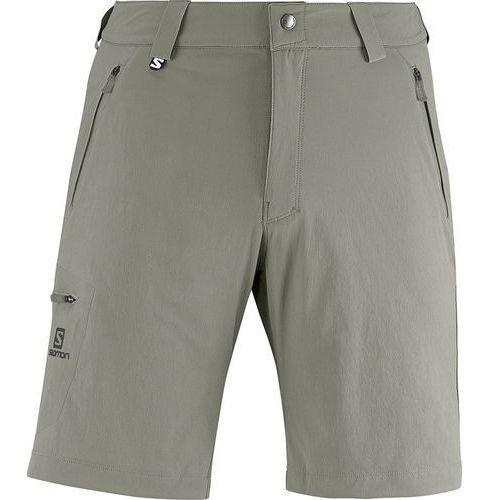 Spodnie Wayfarer Short Titan - produkt z kategorii- spodnie męskie
