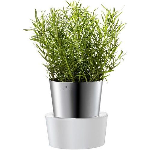 Doniczka na zioła  Herbs, produkt marki Auerhahn