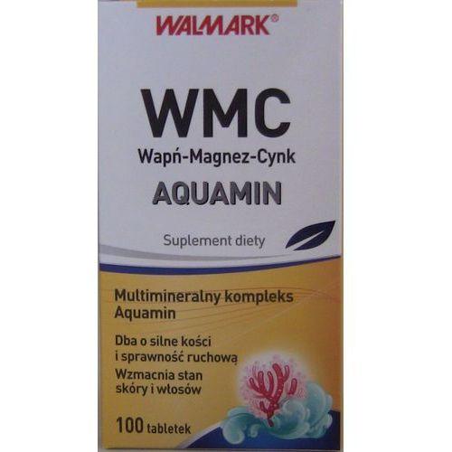 WMC AQUAMIN x 100 tabl, postać leku: tabletki
