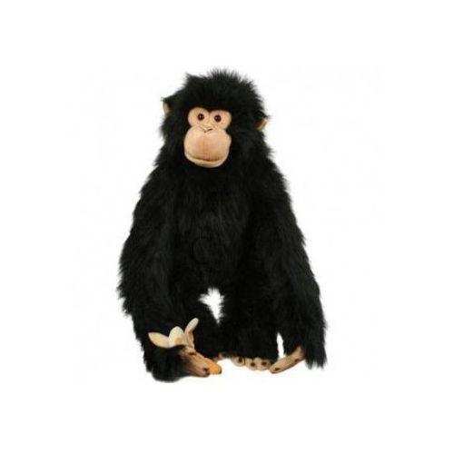 Szympans - pacynka na rękę / 75 cm (pacynka, kukiełka)