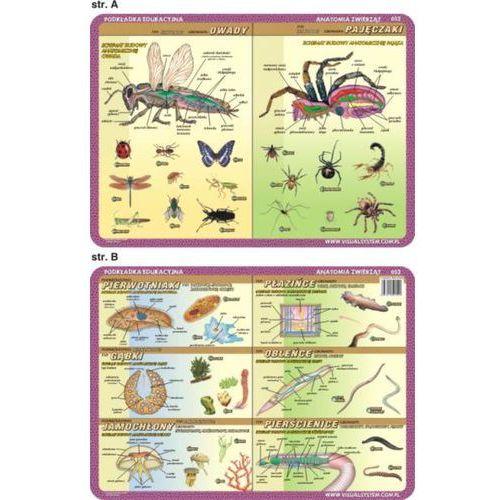 Anatomia zwierząt - podkładka edukacyjna nr 052 - oferta [354de70951221322]