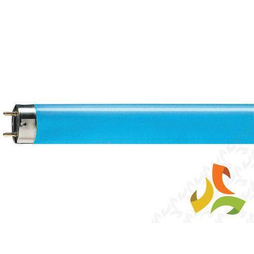 Świetlówka liniowa 36W/18 TL-D Niebieska G13,PHILIPS ze sklepu MEZOKO.COM