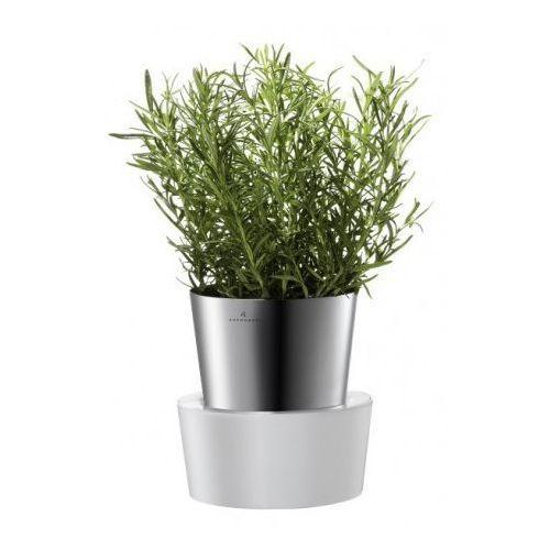 Doniczka Herbs na zioła 1 szt. srebrna – Auerhahn od Chantico