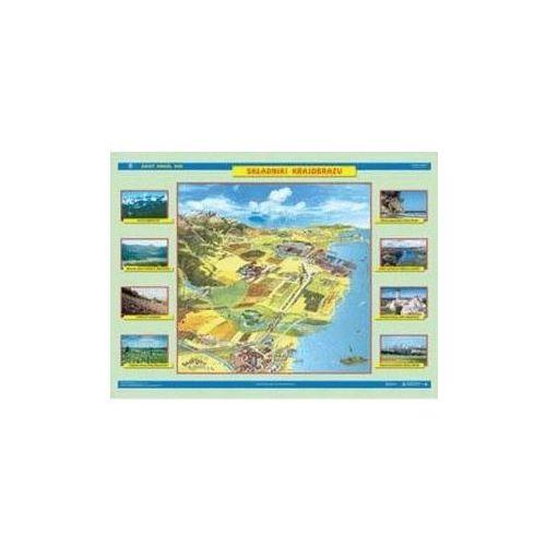 Produkt Składniki krajobrazu / Zmiany w krajobrazie. Mapa ścienna, marki Nowa Era