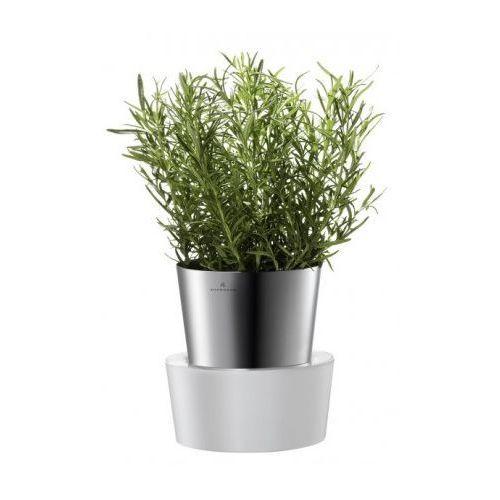 - Doniczka x 1 HERBS na zioła, produkt marki Auerhahn