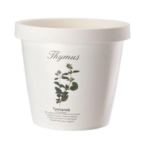 Doniczka do ziół 13 cm Tymianek, produkt marki Galicja