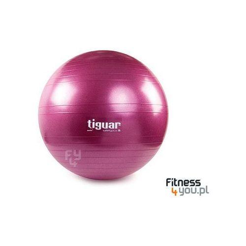 PIŁKA GIMNASTYCZNA SAFETY PLUS 65 CM TIGUAR (ŚLIWKA) :: TRUSTED SHOPS :: POLECANY SPRZEDAWCA :: TEL. 801000505 :: www.aerobik.fitness, produkt marki Tiguar