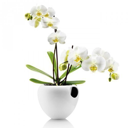 ORCHID Doniczka Samopodlewająca do Kwiatów - Biała, produkt marki Eva Solo