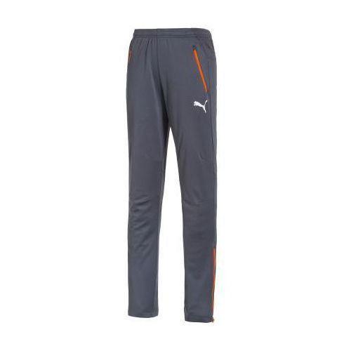 Produkt z kategorii- spodnie męskie - SPODNIE PUMA IT EVOPOWER PANT