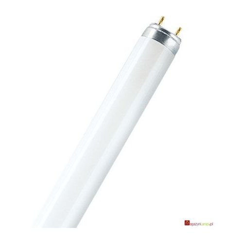 Oferta L 58W/954 świetlówka liniowa T8 Osram