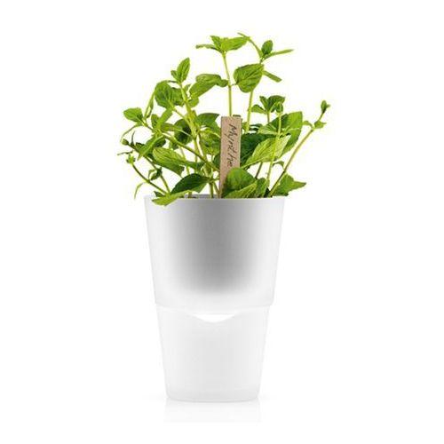 Doniczka na zioła 13 cm Eva Solo mrożone szkło, produkt marki Produkty marki Eva Solo