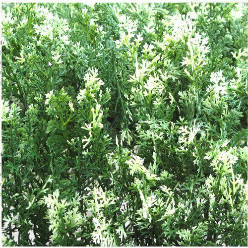 Osłona na płot, balkon SZTUCZNY ŻYWOPŁOT SZTUCZNY 0,5X0,5M TUJA jak żywy/NB246, produkt marki Greeny