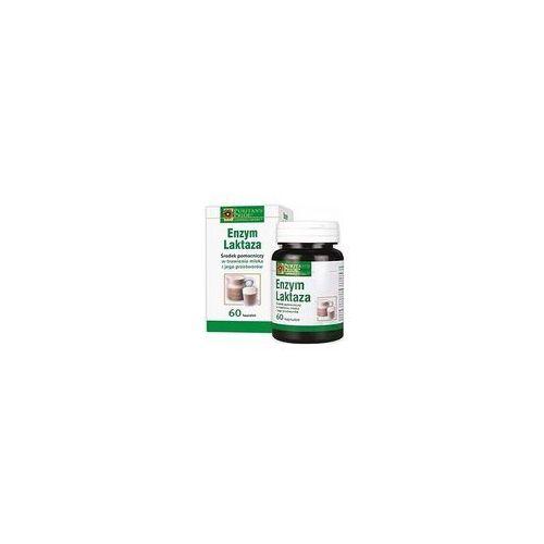 Oferta Enzym laktaza x 60 kaps