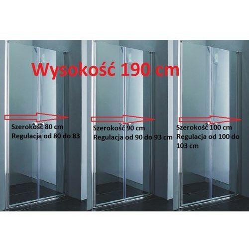 REA - Drzwi prysznicowe WESTERN SPACE z powłaką Easy Clean (drzwi prysznicowe)