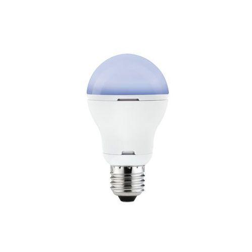 LED 5W E27 230V ultrafiolet z kategorii oświetlenie